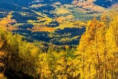 Chute dans Steamboat Springs le Colorado Photo libre de droits