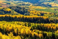 Chute dans Steamboat Springs le Colorado Image stock