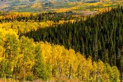 Chute dans Steamboat Springs le Colorado Photo stock
