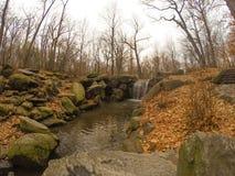 Chute de Central Park Images libres de droits