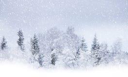 Chute de neige Photos libres de droits