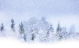 Chute de neige Photos stock