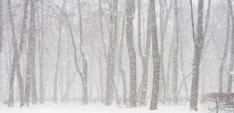 Chute de neige Images stock
