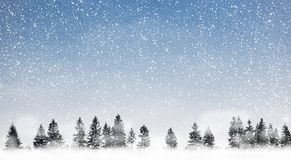 Chute de neige Photo libre de droits