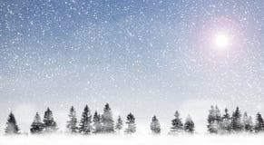 chute de neige Images libres de droits
