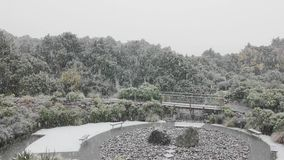 Chute de neige dans le jardin banque de vidéos