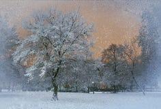 Chute de neige dehors Photos libres de droits