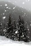 Chute de neige en hiver Photo stock