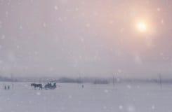 Chute de neige en hiver de Noël dans le village photographie stock