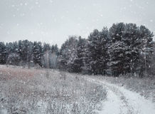Chute de neige en hiver de Noël dans le village photos libres de droits