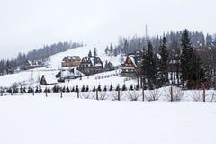 Chute de neige en montagnes de Tatry. photographie stock