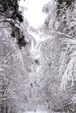 Chute de neige importante dans la ville Photo libre de droits