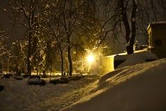 Chute de neige importante en parc avec la lumière de lampe image stock