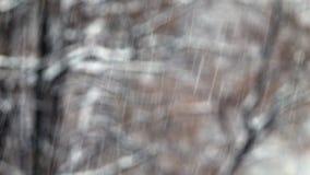 Chute de neige importante urbaine 4K en baisse banque de vidéos
