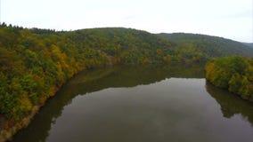 Chute encore calme d'automne de rivière, arbres bruns, pas vagues aériennes banque de vidéos