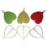 Chute et Autumn Color Leaf Vector Photographie stock