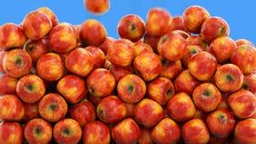 Chute fraîche de pommes Concept de nourriture Mouvement lent Isolat avec l'alpha banque de vidéos