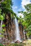 Chutes de forêt Plitvice, parc national, Croatie images libres de droits