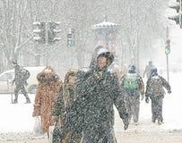 Chutes de neige Photographie stock libre de droits