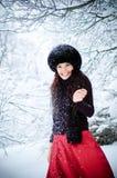 Chutes de neige. Images stock