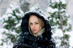 Chutes de neige d'hiver Image stock