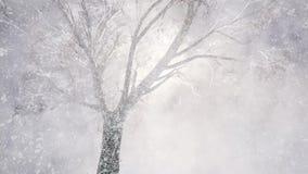 Chutes de neige d'hiver illustration de vecteur