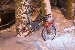 Chutes de neige d'indu vélo de montagneMTB Photographie stock libre de droits
