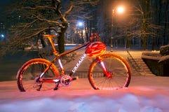 Chutes de neige d'indu vélo de montagneMTB Photographie stock