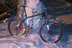 Chutes de neige d'indu vélo de montagneMTB Photo stock