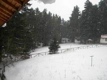 Chutes de neige dans la montagne de Rila images stock