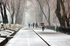 Chutes de neige dans la ville Photos stock