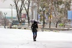 Chutes de neige dans la ville Photo libre de droits