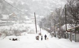 Chutes de neige dans une campagne avec des arbres dans la neige, backgrond defocused photos stock