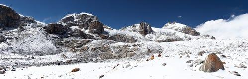 chutes de neige du Népal de montagnes de l'Himalaya Images libres de droits