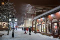 Chutes de neige fortes de février Photos stock