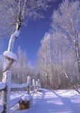 Chutes de neige fraîches Image libre de droits