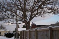 Chutes de neige fraîches Photos stock