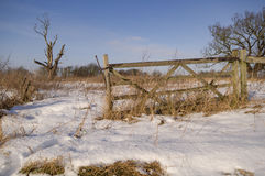 Chutes de neige fraîches en le Suffolk Photo libre de droits