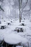 Chutes de neige à Istanbul Photographie stock libre de droits