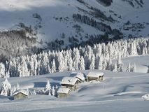 chutes de neige lourdes Photo stock