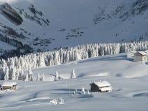 chutes de neige lourdes Image libre de droits