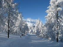 chutes de neige lourdes Images stock