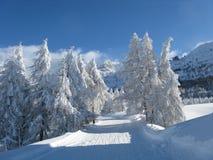 chutes de neige lourdes Photographie stock