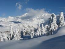 chutes de neige lourdes Image stock