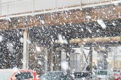 Chutes de neige lourdes photo libre de droits