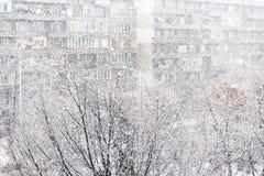 Chutes de neige lourdes ou tempête de neige Photographie stock
