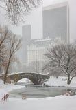 Chutes de neige sur le pont de Gapstow de Central Park et l'étang photo libre de droits