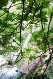 Chutes du Grand Baou - Le Val - la Francia immagini stock libere da diritti