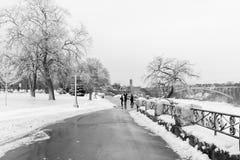 Chutes du Niagara, Canada, en hiver avec la neige et la glace photographie stock