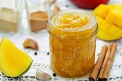 Chutney de mangue photographie stock